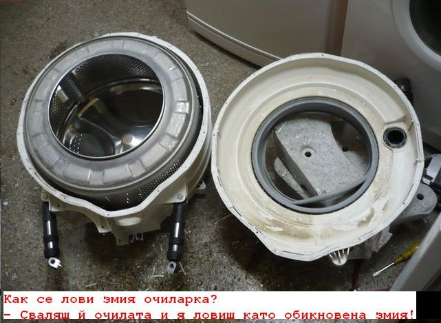 att-499a53c3a69521.jpg